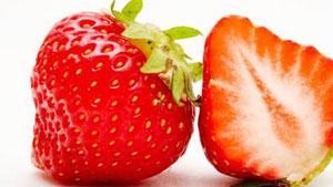 Erdbeeren mit dunklen Druckstellen nicht mehr essen
