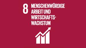 Nachhaltigkeitsziel 8