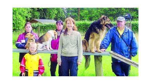 Stressbewaltigung Bockhorn Endlich Nie Mehr Angst Vor Hunden