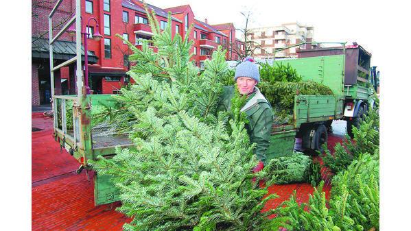 Der Letzte Weihnachtsbaum.Weihnachtsbäume Nordenham Viele Kaufen Auf Den Letzten Drücker