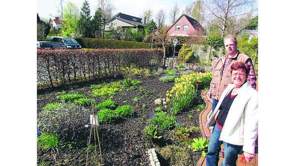 Garten Janssen frühlings aktion jever flussbett und sprudelbrunnen