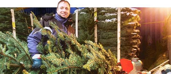 Ikea oldenburg weihnachtsbaum