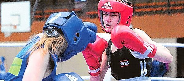 Boxen sport1