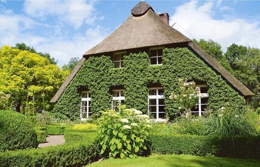 Offene Garten Nordenholz Spiel Mit Der Natur