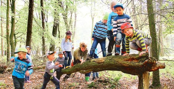 Klettergerüst Baum : Kinderspielplatz mit akrobatischen ringen und klettergerüst