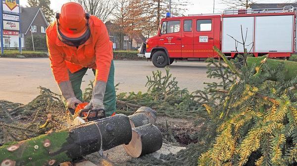 vandalismus wahnbek weihnachtsbaum in wahnbek zerst rt. Black Bedroom Furniture Sets. Home Design Ideas