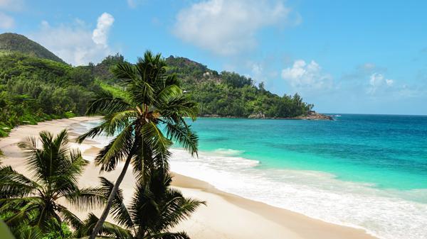 Hawaii Reise Gewinnen 2021