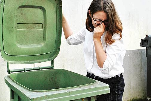Biomüll Im Sommer Küche : Probleme mit biomüll oldenburg das hilft gegen ekel alarm in der