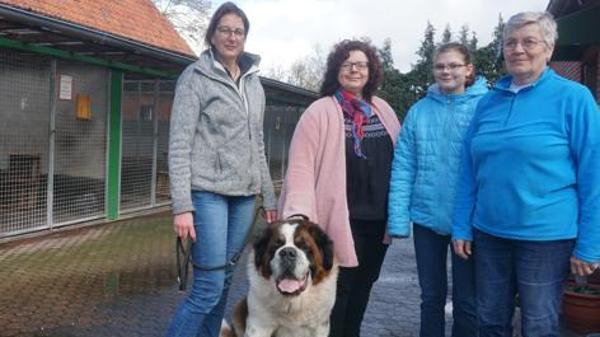 tierheim ammerland hunde