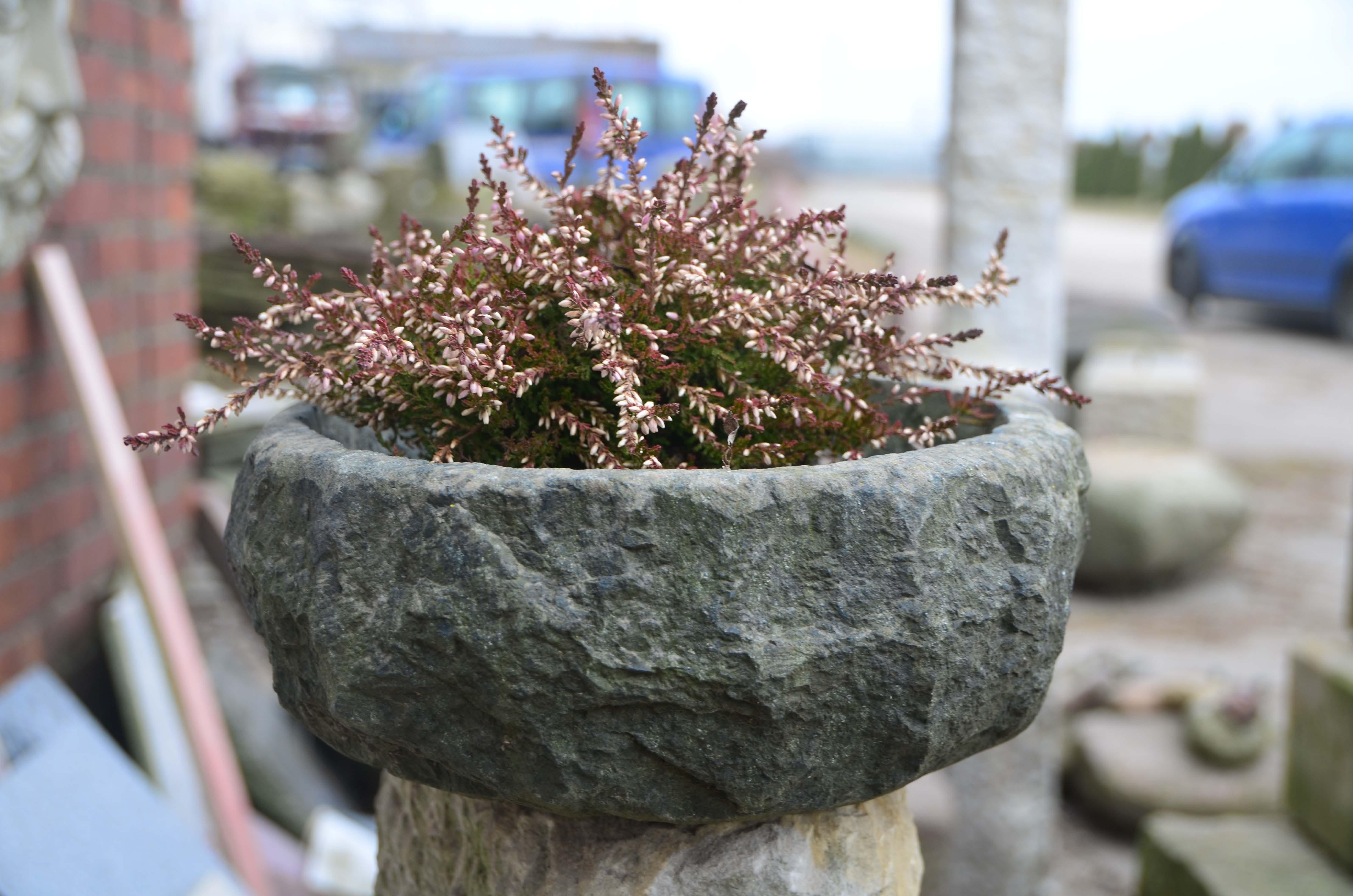 Gartendeko in stein gemei elt for Gartendeko stein