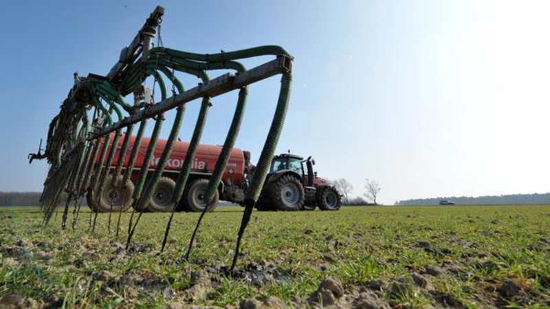 Landwirtschaft Im Landkreis Oldenburg: Rote Gebiete werden