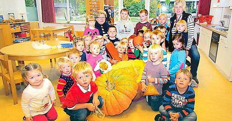 Aktion B Sel 77 Kilogramm K Rbis F R Kinder Der Knaller