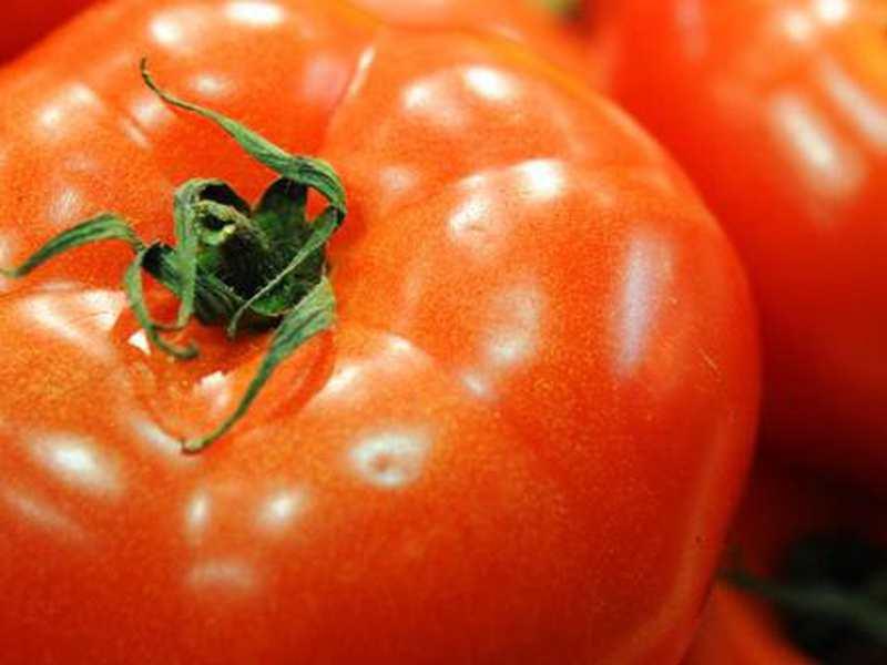 nicht zu kalt gr ne tomaten drinnen nachreifen lassen. Black Bedroom Furniture Sets. Home Design Ideas