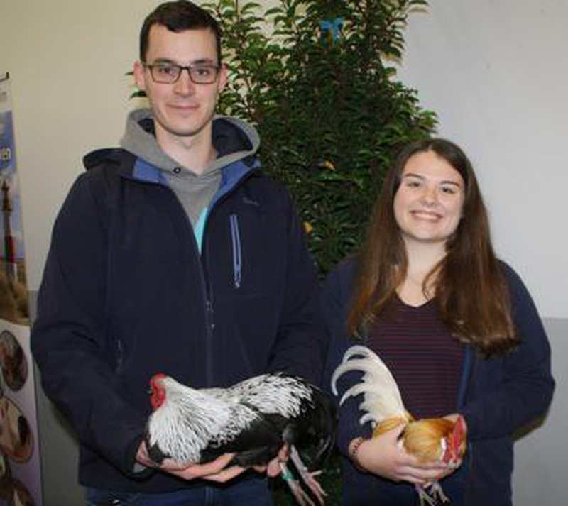 Rund 500 Tiere In Der Westersteder Deula Präsentiert: Züchter aus ganz Deutschland zeigen ihr Geflügel - Nordwest-Zeitung