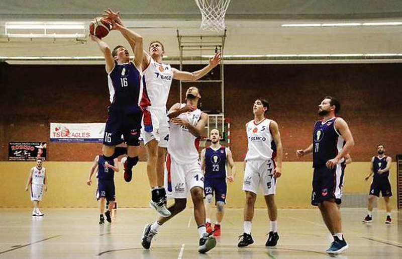 Basketball: Eagles setzen Höhenflug fort - Nordwest-Zeitung