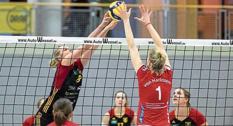 """Volleyball: """"Gallier"""" aus Aligse souverän entzaubert - Nordwest-Zeitung"""